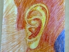 Wax-crayon_Ear_scetching_for_sculpture